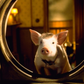 Babe: Pig in theCity